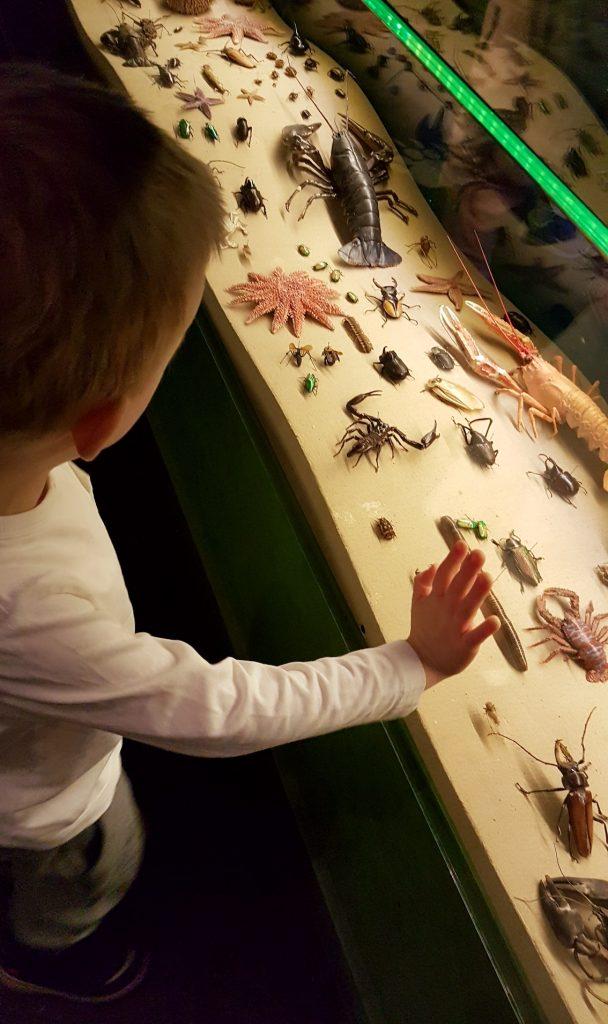 bra museum för barn